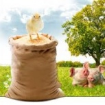 Продам Комбикорм для кур