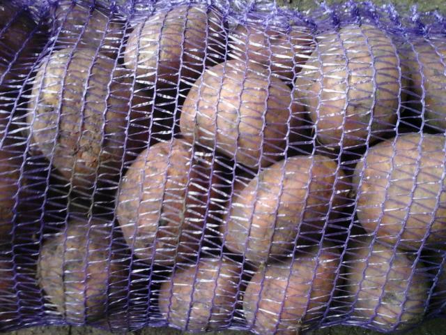 Продам Оптовые поставки, картофеля.