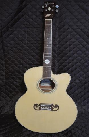 Продам уникальную акустическую гитару Euphony