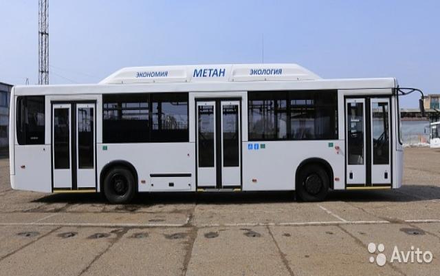 Продам: городской автобус