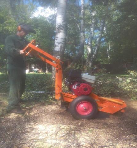 Предложение: Спилить деревья в Москве