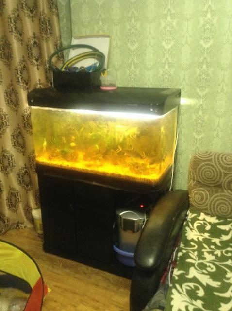 Продам Аквариум 250 литров