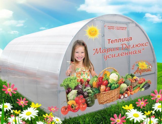 """Продам Теплица """"Мария Делюкс Усиленная"""""""
