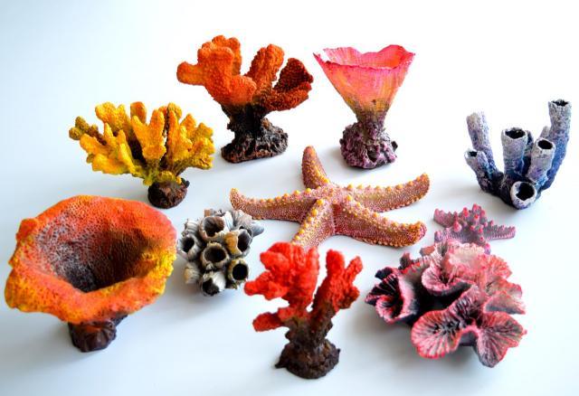Продам Красивые коралловые рифы фабрика Marvelo