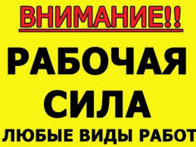 Ищу работу: Разнорабочие гр.РФ 24 часа