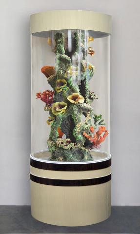 Продам Уникальный аквариум Marvelous-254л