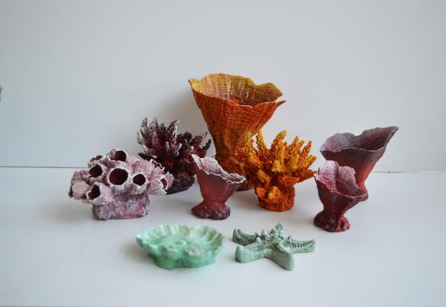 Продам Красивые кораллы для аквариума