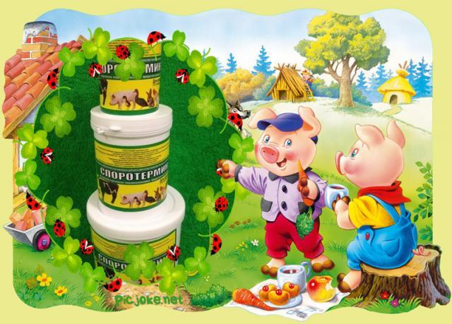 Продам Пробиотик для роста и сохранности свиней