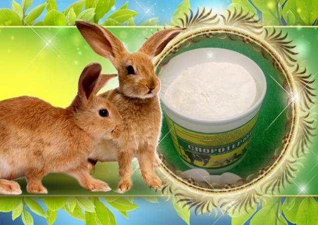 Продам Пробиотик для роста,сохранности кроликов