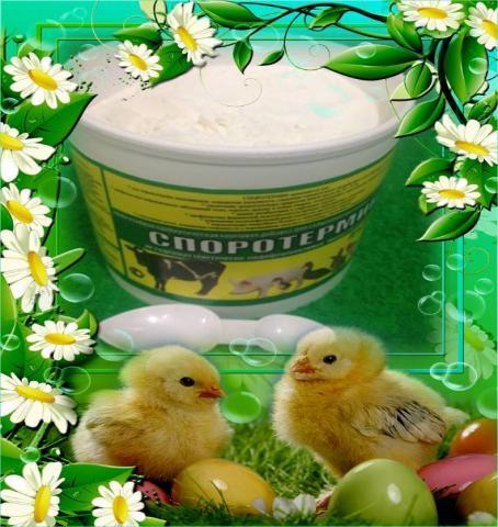 Продам Пробиотик для роста и сохранности цыплят