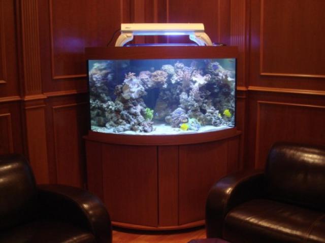 Продам Обслуживание аквариумов в Москве