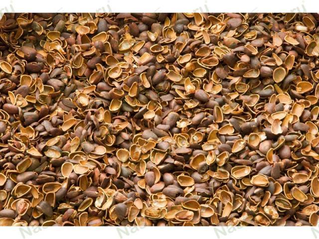 Продам Скорлупа (лузга) кедрового ореха