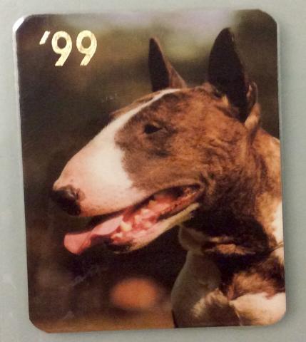 Продам Календарик. Собака. 1999 год. Обмен.
