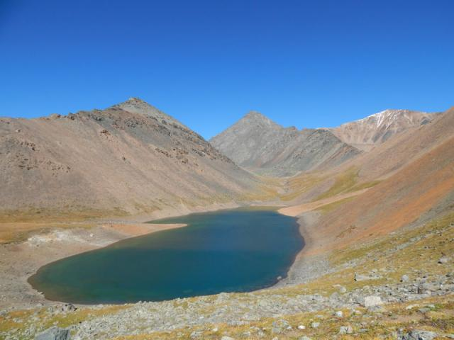 Предложение: Арт-тур на Алтай с 4-11 июня для жителей