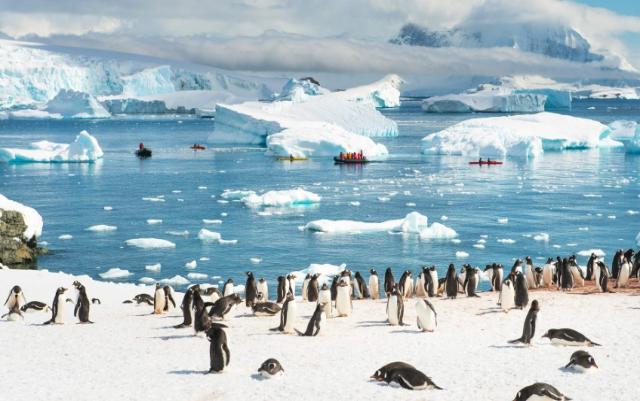 Предложение:  Новый Год в Антарктиде