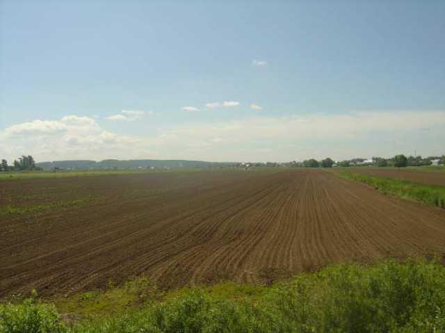 Продам: земельный участок общ.пл.190 Га сельхозн