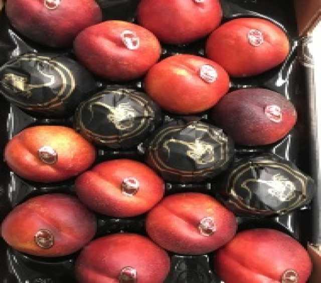Продам Продаем нектарин из Испании