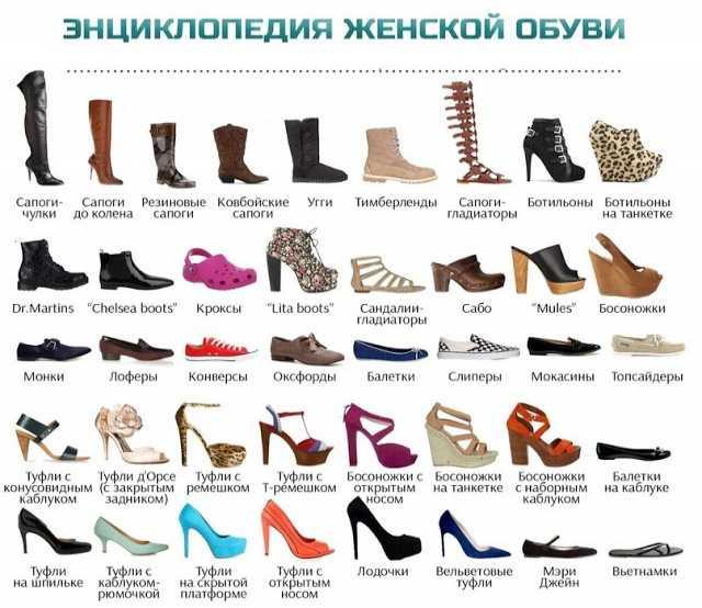 Предложение: Женская обувь