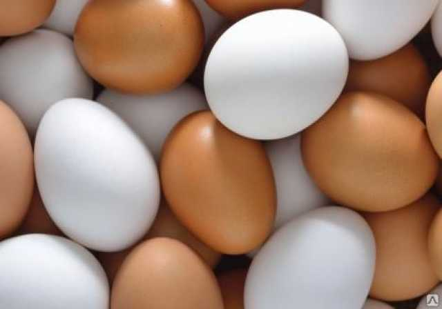 Продам Яйцо куриное пищевое (оптом)