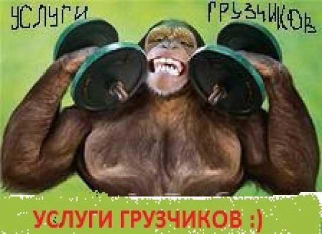 Предложение: Услуги грузчиков в Калининграде