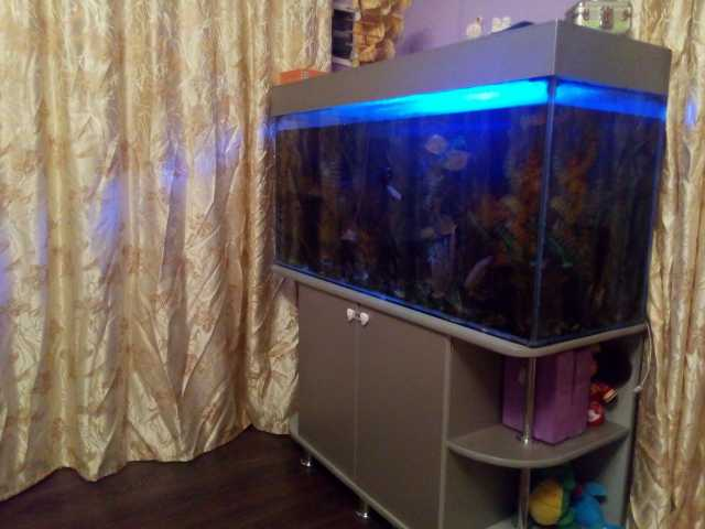 Продам Продам аквариум.