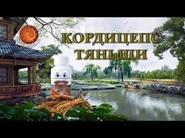 Продам Кордицепс «Тяньши» – это мощнейший антио