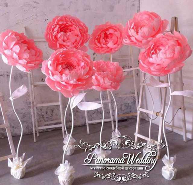 Продам Цветы гиганты