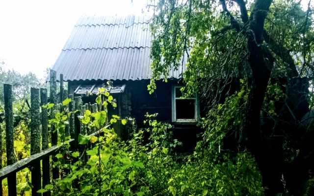 Продам: Небольшой хуторок под пасеку