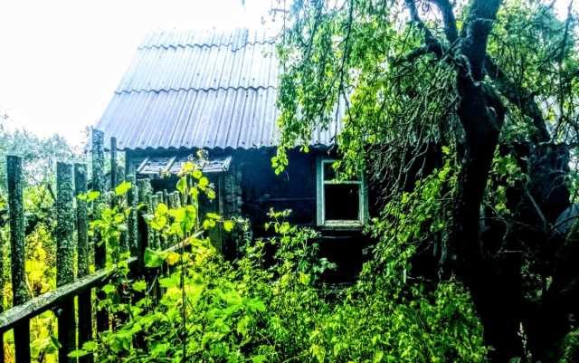 Продам: Хутор с зимним домиком, 40 соток земли