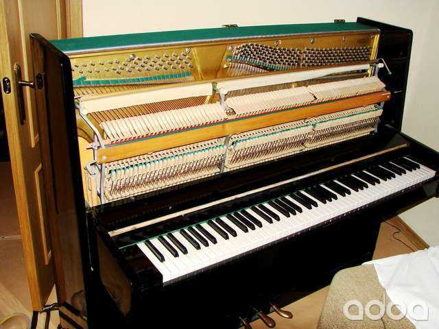 Предложение: Настройка фортепиано пианино