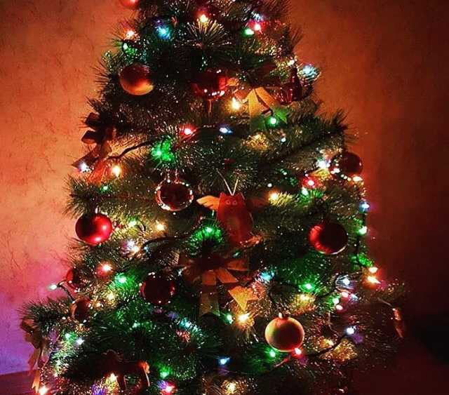 Продам елка новогодняя