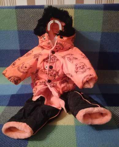 Продам Комбинезон и лежак для маленькой собачки