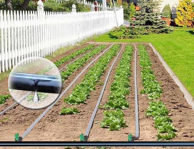 Продам Капельный полив растений КПК 100 готовый