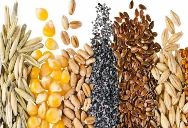 Продам Семена яровых культур на посевную 2018