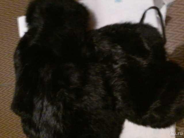 Продам Шапка мужская кроличья