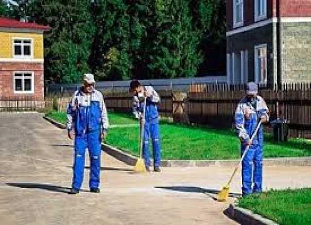 Предложение: Профессиональная уборка территории