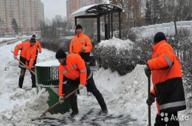 Предложение: Уборка Снега Разнорабочие
