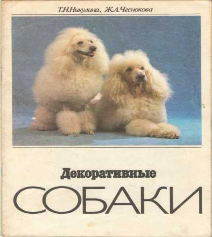 Продам: Декоративные собаки. Никулина Т.Н.