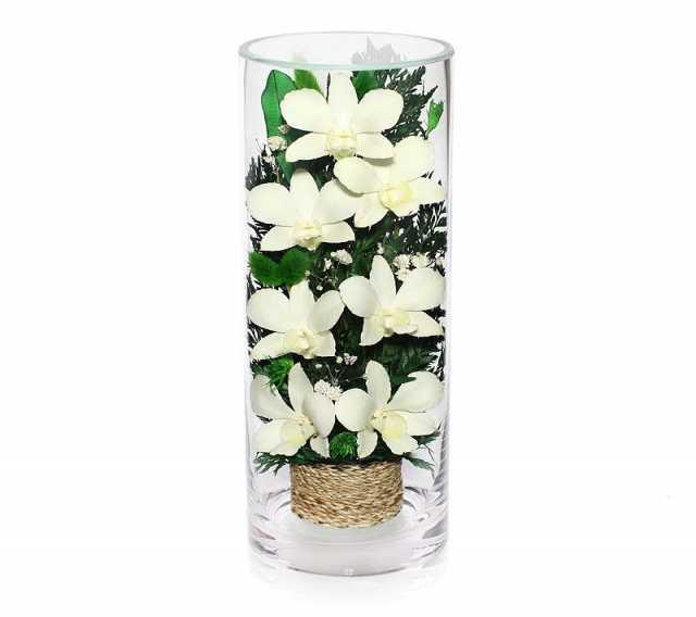 Продам Композиция из белых орхидей (арт. CLO2)