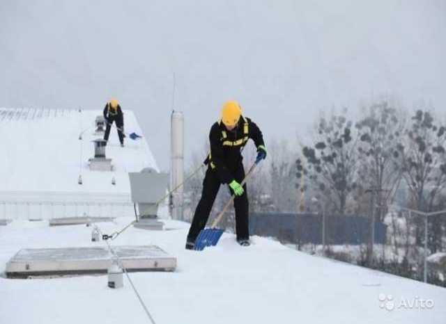 Предложение: уборка снега вывоз мусора