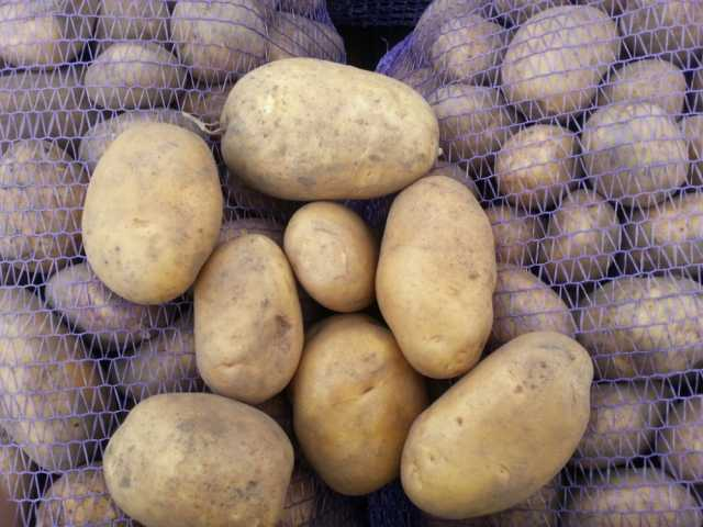 Продам Картофель из Беларуси