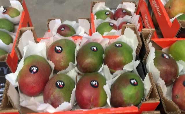 Продам Продаем манго из Испании