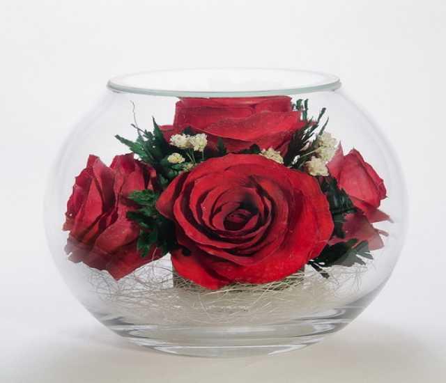 Продам Цветы в стекле