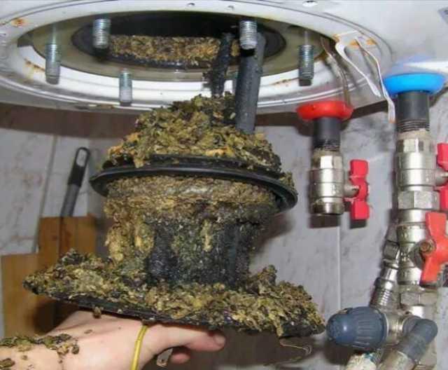 Предложение: Ремонт и чистка водонагревателя