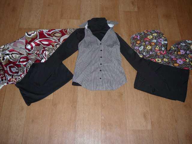 Продам Водолазки, блузки на размер 42-46 в отл.