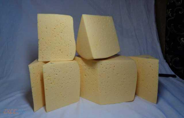 Продам Сыр оптом.