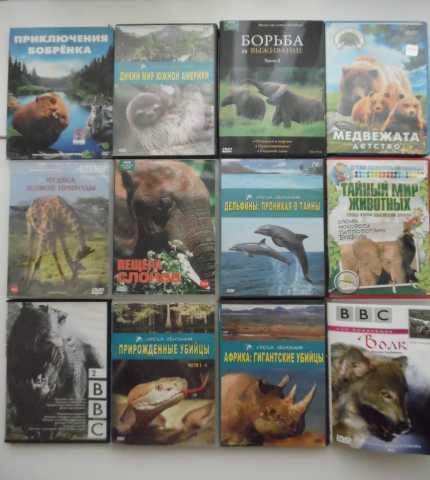 Продам Фильмы о животном мире на dvd дисках