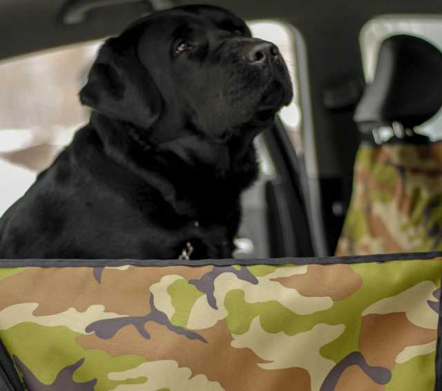 Продам Автогамак для перевозки собак в машине