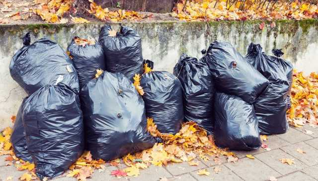 Предложение: Вывоз листвы, веток, мусора в Омске