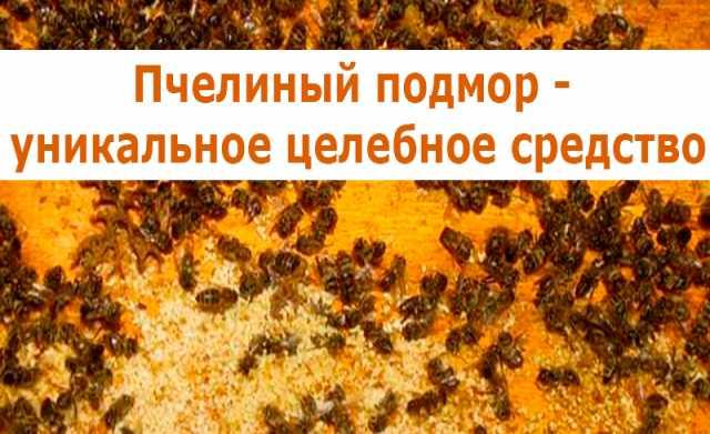 Продам Пчелинный подмор. Настой  8 902 755 3423